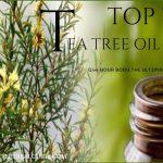 Top 7 Tea Tree Oil Uses
