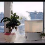 5 Best Rated Air Purifier with HEPA Technology