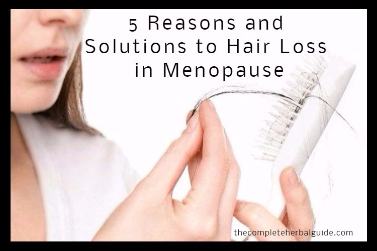 5 Reasons and Solutions to Hair Loss in Menopause