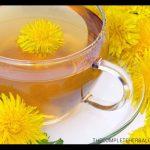 Milk thistle and dandelion tea