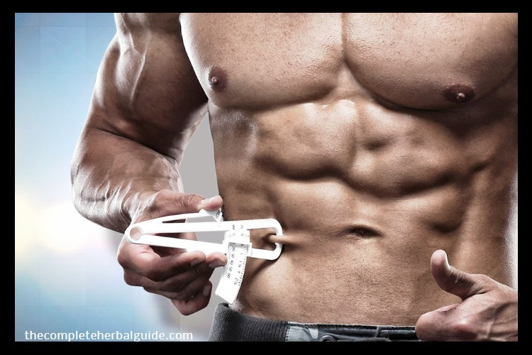 Be Aware of Your Body Fat Percentage