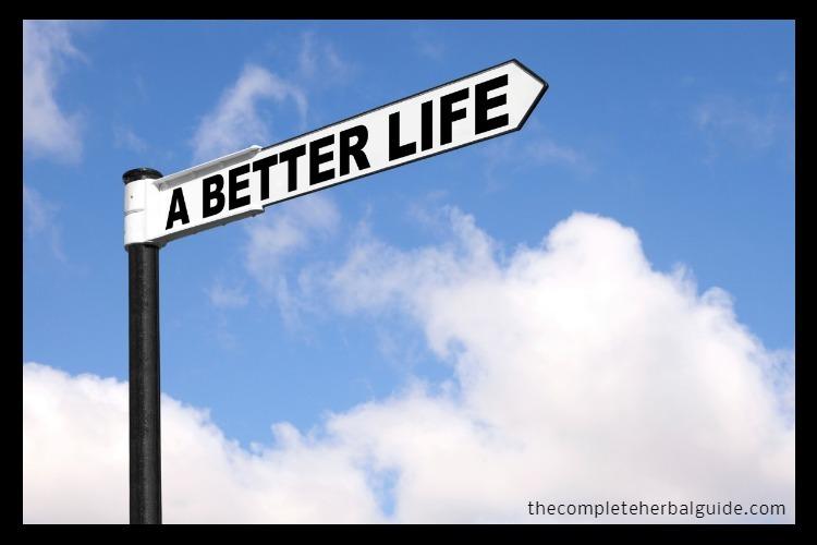 Ways-to-Improve-Your-Life-