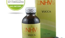 Yucca_for_cat_pain_appetite_digestion