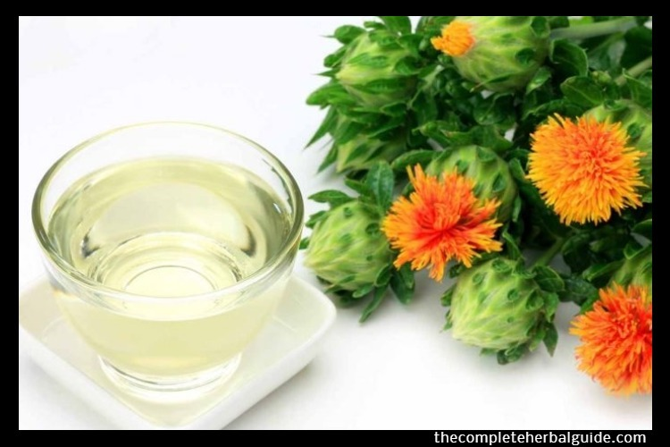 CLA Safflower Oil