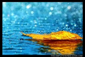 rain health benefit