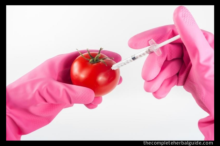 injecting fruit