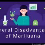 General Disadvantages of Marijuana