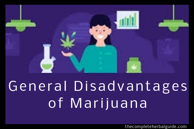 General Disadvantages of Marijuana