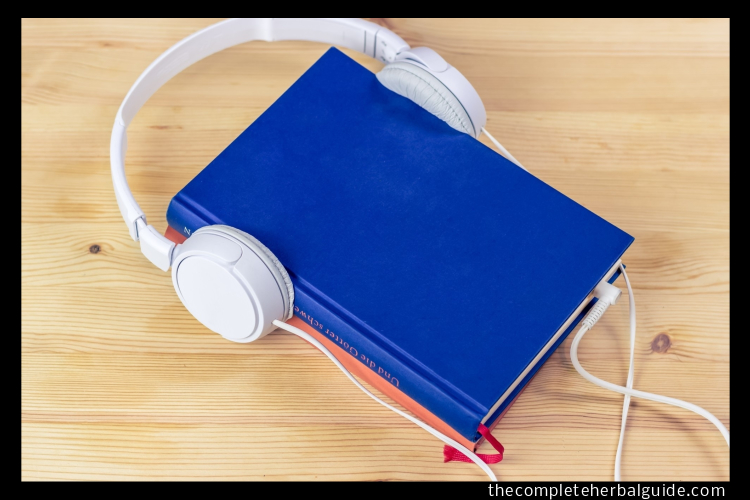 Pixabay.com royalty-free image #3106986, 'audiobook, tablet, touch screen' uploaded by user sik-life, retrieved from https://pixabay.com/photos/audiobook-tablet-touch-screen-read-3106986/ on July 31st, 2019. License details available at https://pixabay.com/en/service/terms/#usage - image is licensed under Creative Commons CC0 license