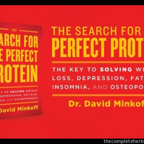 The Search For The Perfect Protein (1)