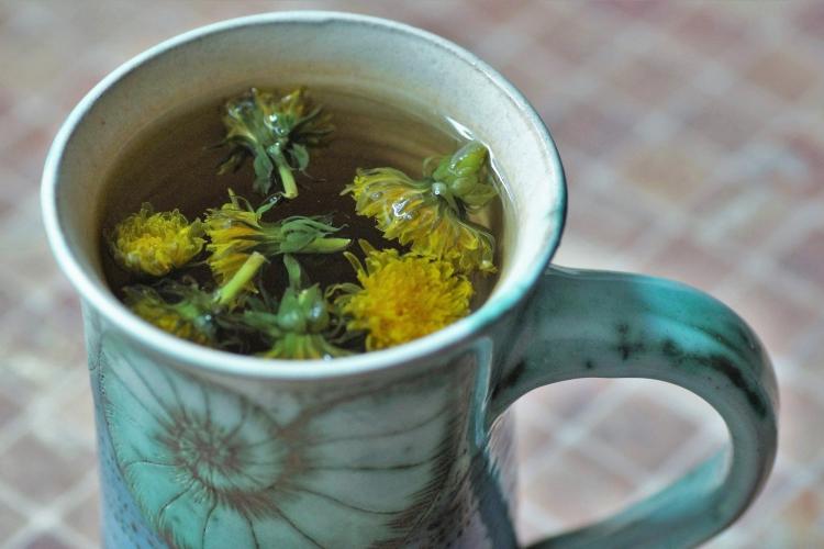 Dandelion tea for weight gain