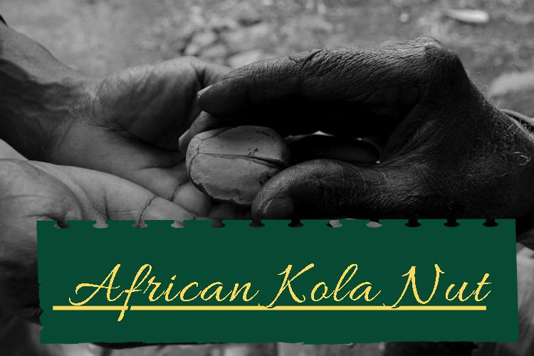 African Kola Nut