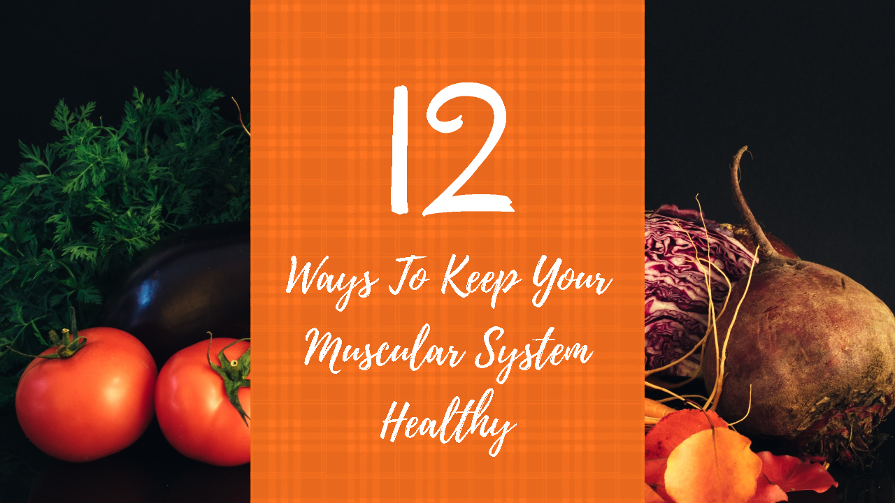 Ways To Keep Your Muscular System Healthy